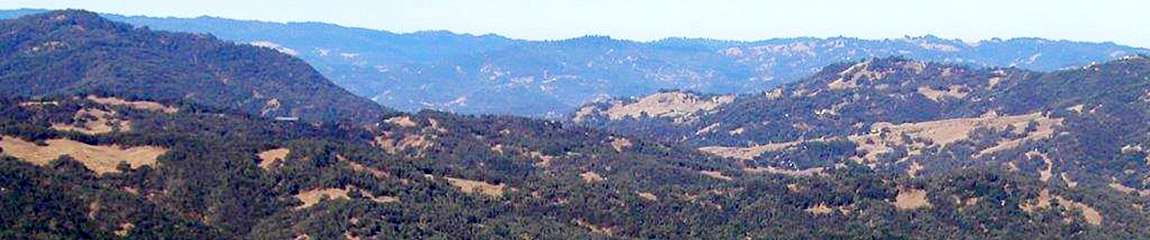 Forested hills common to Tule Elk country in California